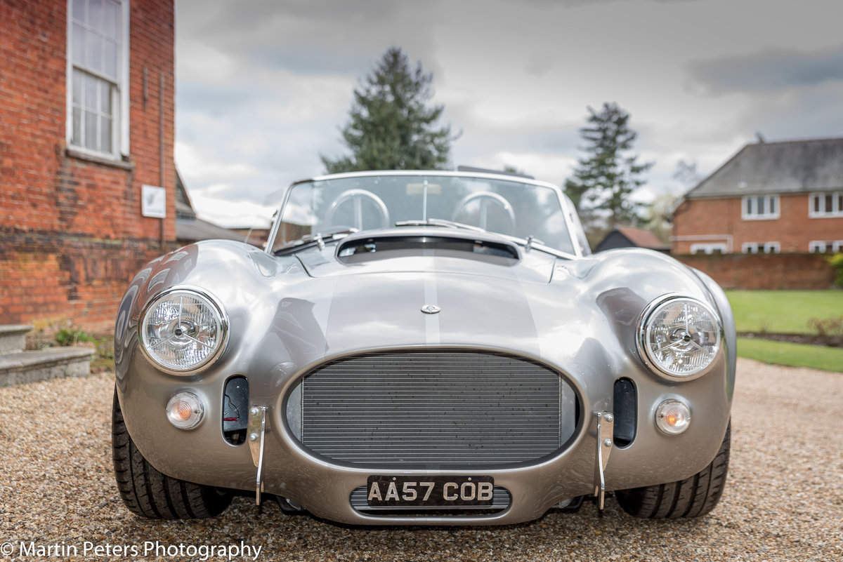 2016 Cobra by DAX     For Sale (picture 2 of 6)