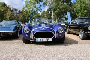 Picture of 2007 Pilgrim Cobra Replica 5.7 V8 For Sale