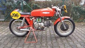1967 Aermacchi - 350 Ala D´oro