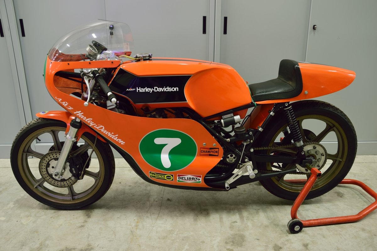 1974 Aermacchi Harley Davidson RR 250 For Sale (picture 1 of 6)