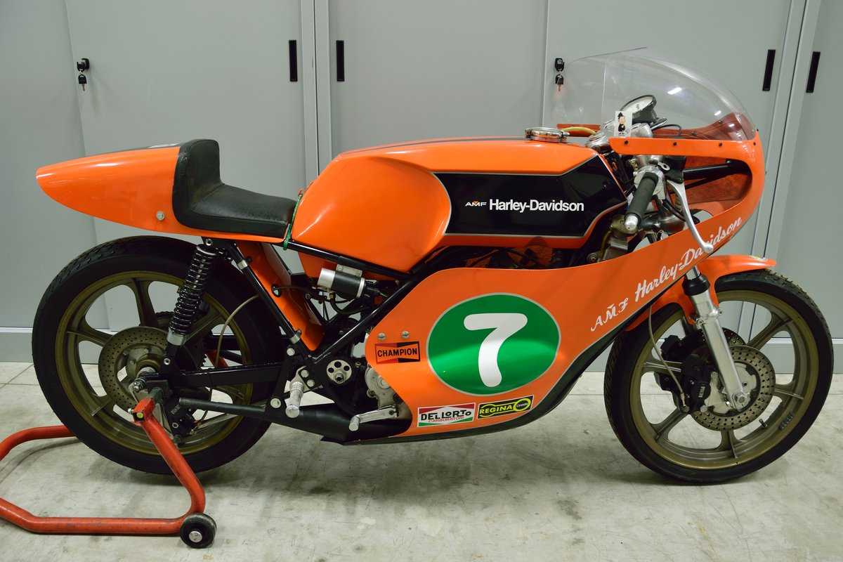 1974 Aermacchi Harley Davidson RR 250 For Sale (picture 2 of 6)