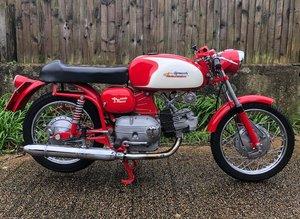 1966  AERMACCHI 246CC ALA VERDE (LOT 339)