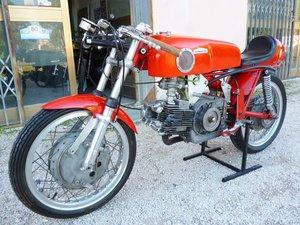 1966 Aermacchi 350 Ala d' Oro
