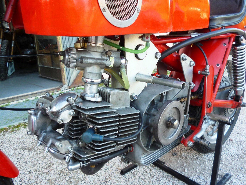 1966 Aermacchi 350 Ala d' Oro For Sale (picture 3 of 6)