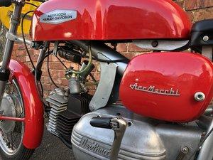 1961 Aermacchi-Harley-Davidson For Sale