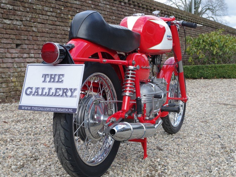 1962 Aermacchi - Harley Davidson Ala Verde 250 For Sale (picture 3 of 6)