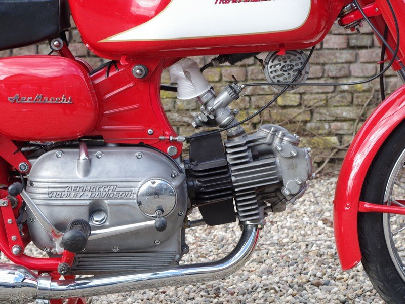 1962 Aermacchi - Harley Davidson Ala Verde 250 For Sale (picture 4 of 6)