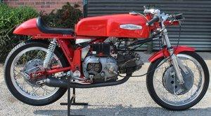Picture of c1967 Aeramcchi 250 cc Ultra Short Stroke 5 Speed Ala d Oro  SOLD