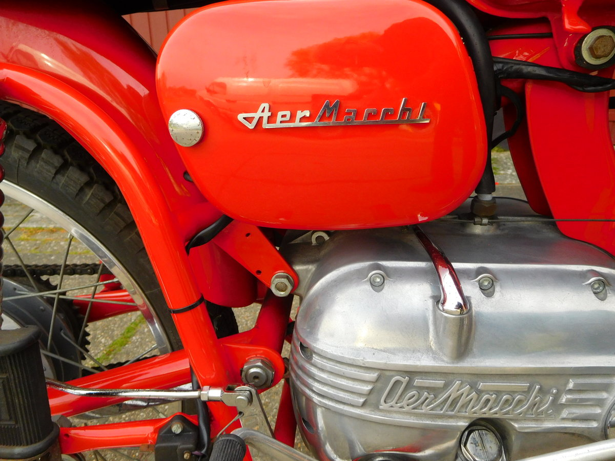 1965 Aermacchi Ala Verde in exellent condition For Sale (picture 4 of 6)