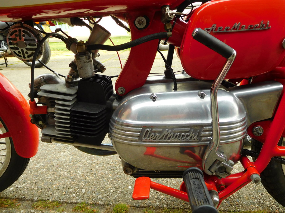 1965 Aermacchi Ala Verde in exellent condition For Sale (picture 5 of 6)