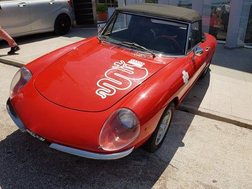 1969 Alfa Romeo Spider Duetto 1750 Veloce Restored Lhd For Sale (picture 1 of 5)