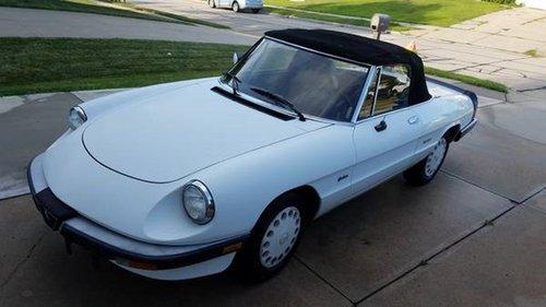 1990 Alfa Romeo Spider Graduate  For Sale (picture 1 of 6)