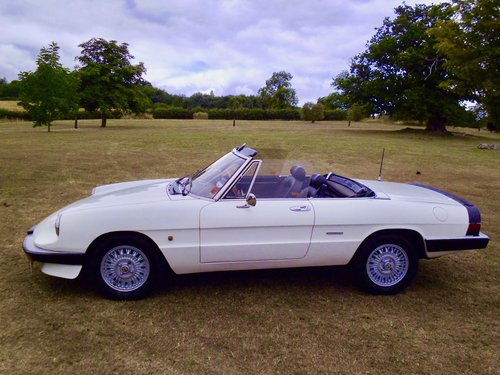 1988 Alfa Romeo Kammtail spider For Sale (picture 3 of 6)