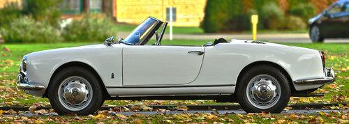1966 Alfa Romeo Giulia Spider Convertible SOLD (picture 3 of 6)