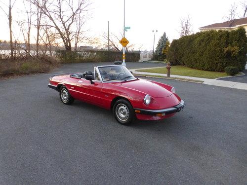 1986 Alfa Romeo Spider Veloce Presentable Driver - For Sale (picture 1 of 6)