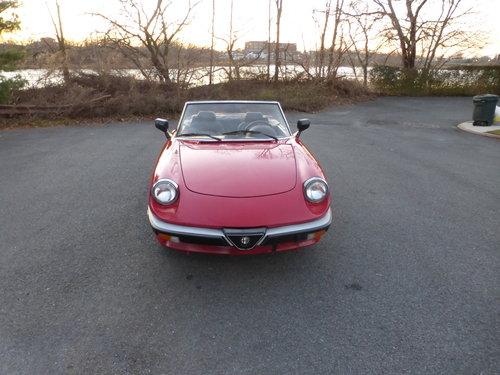 1986 Alfa Romeo Spider Veloce Presentable Driver - For Sale (picture 2 of 6)