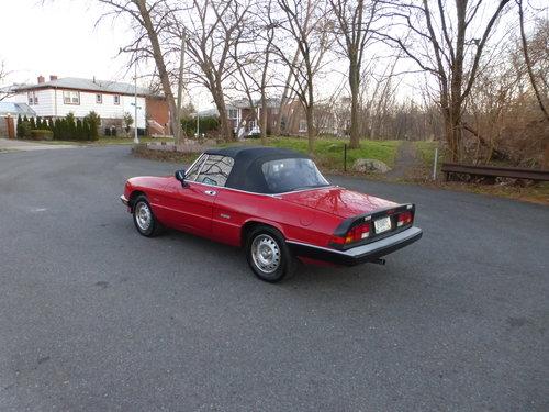 1986 Alfa Romeo Spider Veloce Presentable Driver - For Sale (picture 4 of 6)