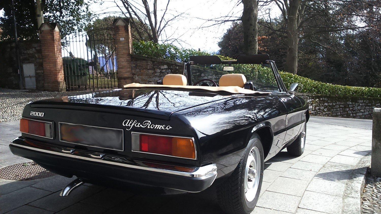 1980 Top condition ALFA ROMEO 2000 SPIDER CODA TRONCA For Sale (picture 3 of 6)