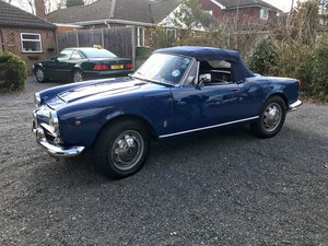1963 Giulia Spider (101.19) For Sale