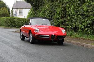 1967 Alfa Romeo Spider 1600 Duetto - Pristine Condition For Sale