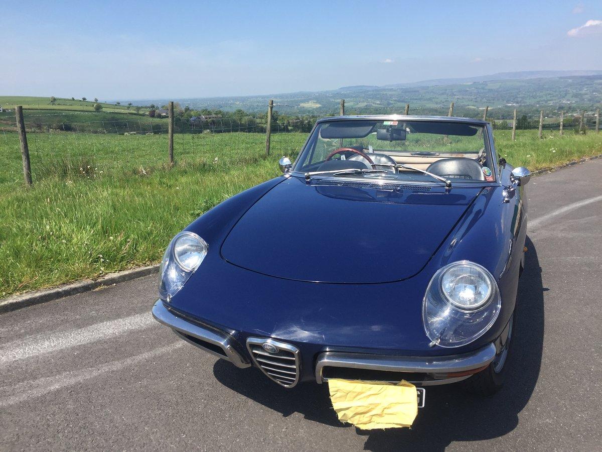 1968 Alfa romeo duetto boatail 1750 spider For Sale (picture 4 of 6)
