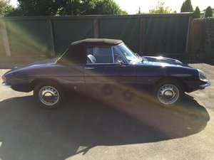 1968 Alfa romeo duetto boatail 1750 spider For Sale