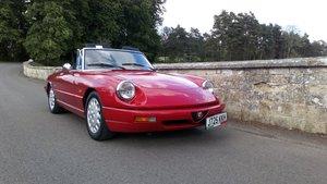 1991 Alfa Romeo Spider series 4 For Sale