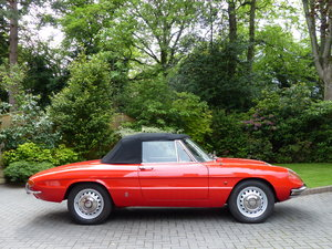 1966 Alfa Romeo 1600 Duetto Spider LHD £39950 For Sale