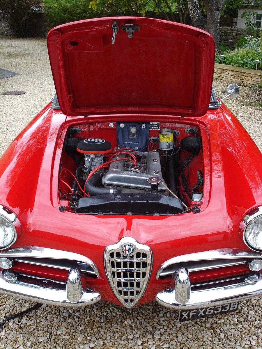 1964 LHD Alfa Romeo Giulia Spider For Sale (picture 6 of 6)