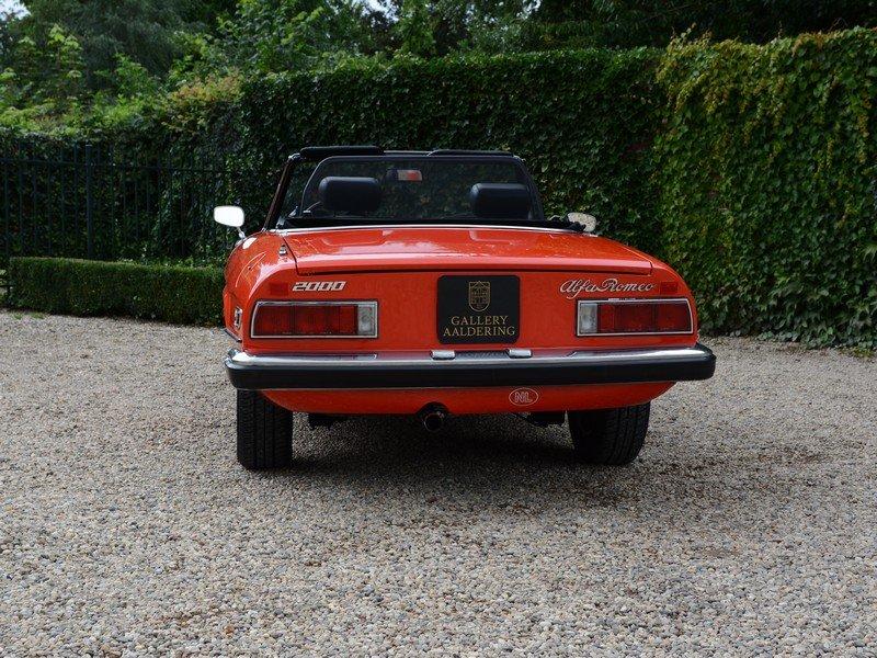 1978 Alfa Romeo Spider 2000 Veloce For Sale (picture 6 of 6)