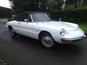 1967 Alfa romeo duetto spider 1600cc  For Sale