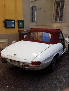 1969 Alfaromeo Duetto