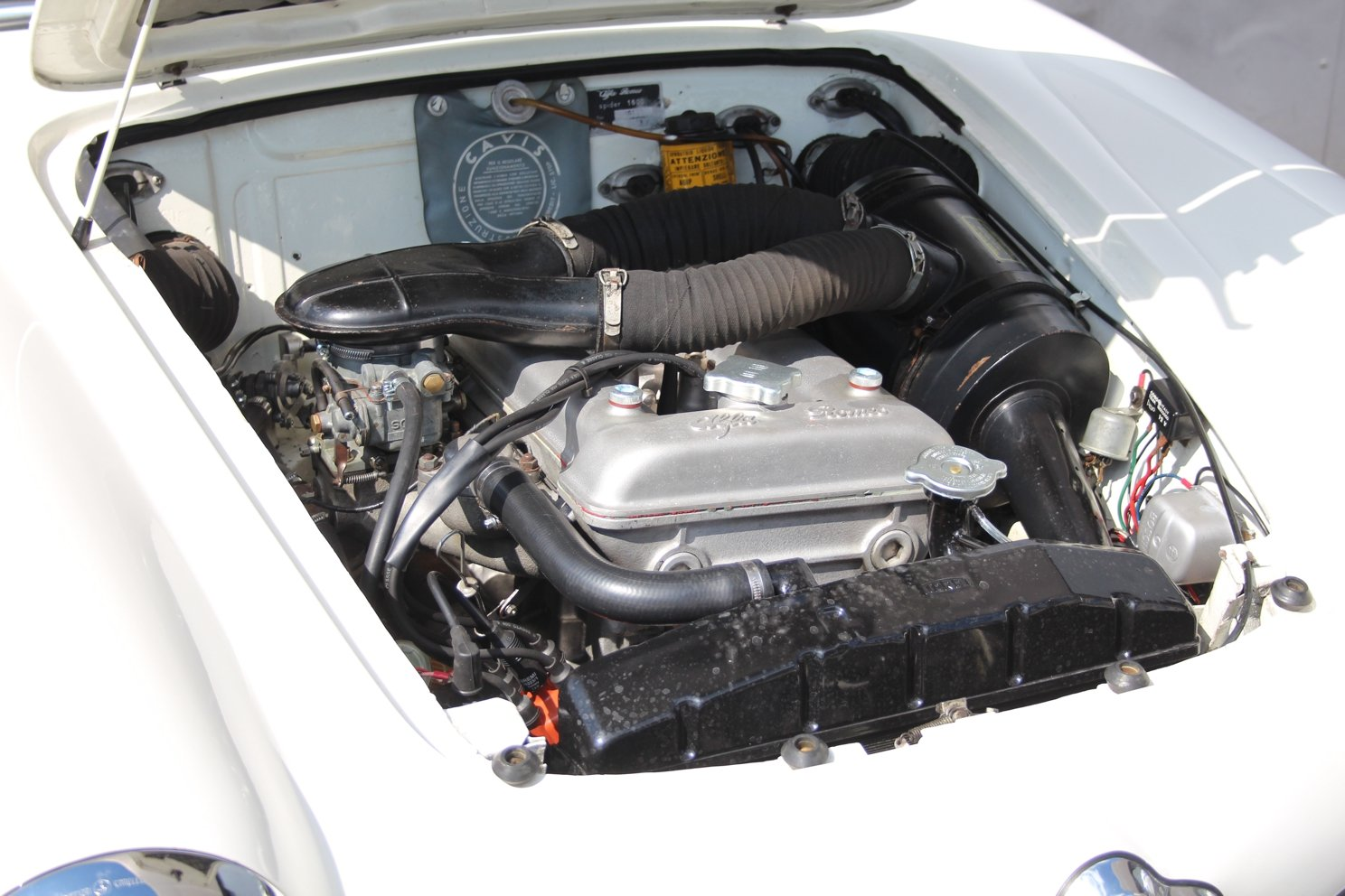 1963 Alfa Romeo Giulia Spider LHD For Sale (picture 4 of 6)