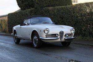 1964 Alfa Romeo Giulia Spider, UK RHD, Years in Canary Islands For Sale