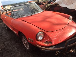 1977 Alfa Romeo Spider For Sale