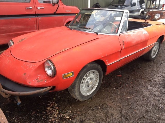1977 Alfa Romeo Spider For Sale (picture 3 of 6)