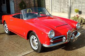 1964 Alfa Romeo Giulia 1600 Spider