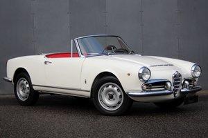 1963 Alfa Romeo Giulia Spider LHD For Sale