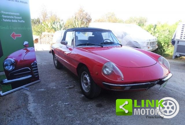 1980 Alfa Romeo Spider 2.0 Veloce For Sale (picture 5 of 6)