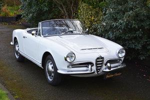1963 Alfa Romeo Giulia 1600 Spider RHD
