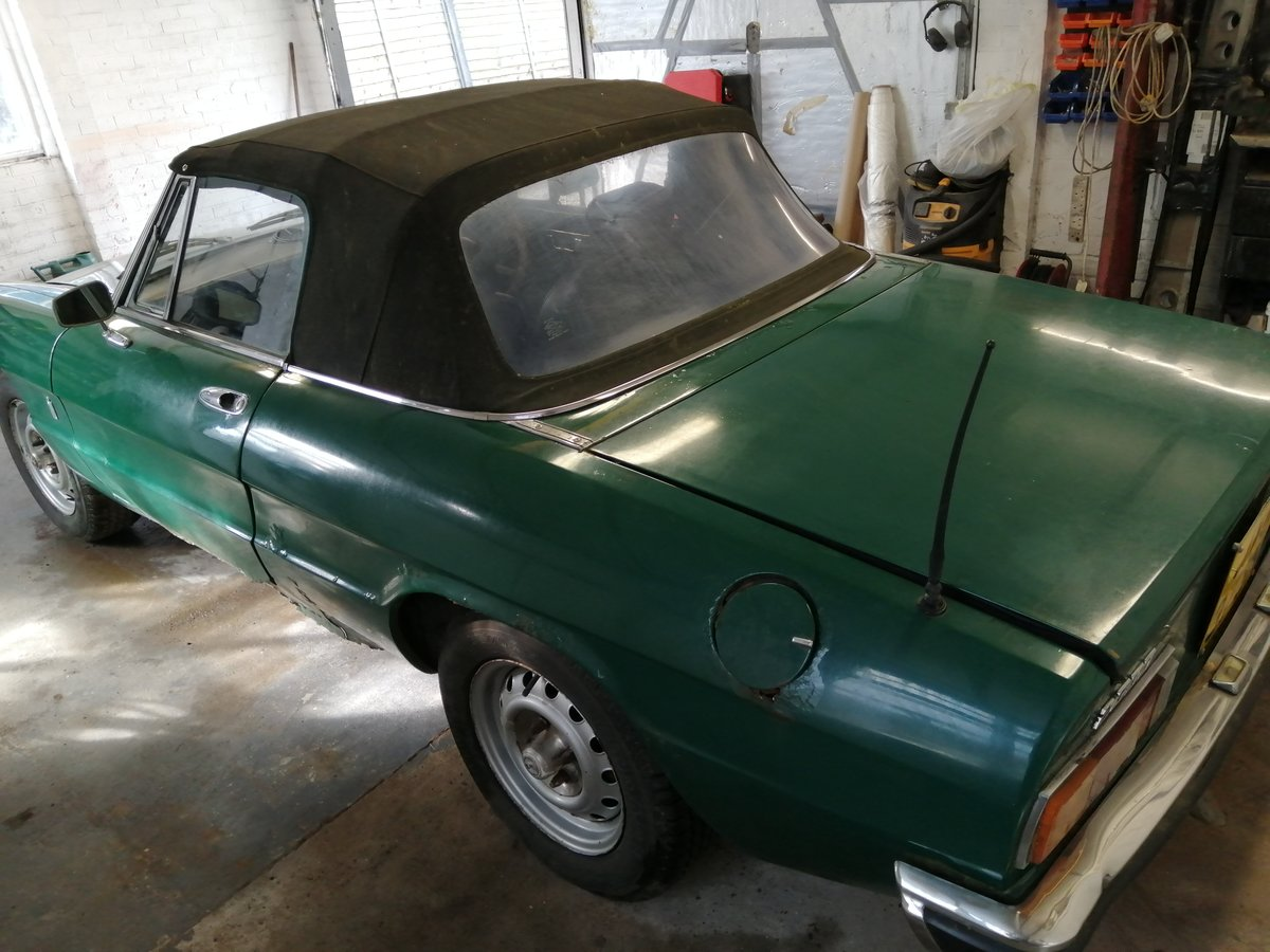1975 Alfa Romeo Spider For Sale (picture 5 of 6)