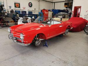 1965 Alfa Romeo Giulia Spider Veloce - Concours Standard
