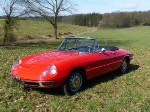 1968 Alfa Romeo Spider 1300 Junior - powerful engine (1,779 cc) For Sale