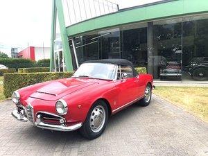 Alfa Romeo Giulia Spider Veloce LHD - 1965 For Sale