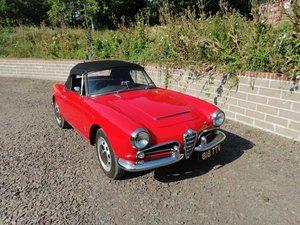 1963 101 Giulia Spider 1600 right hand drive