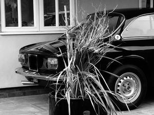 Picture of 1976 ALFA ROMEO GT 1600 Junior