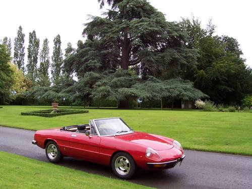 1972 Classic Alfa Romeo's GTV and Spider for hire For Hire (picture 5 of 6)