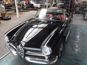 Picture of Alfa Romeo 1300 Spider 750 black 1960 For Sale