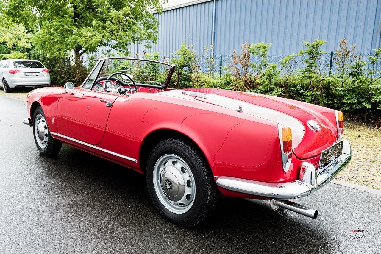 1961 Alfa Romeo Giulietta Spider For Sale (picture 3 of 27)