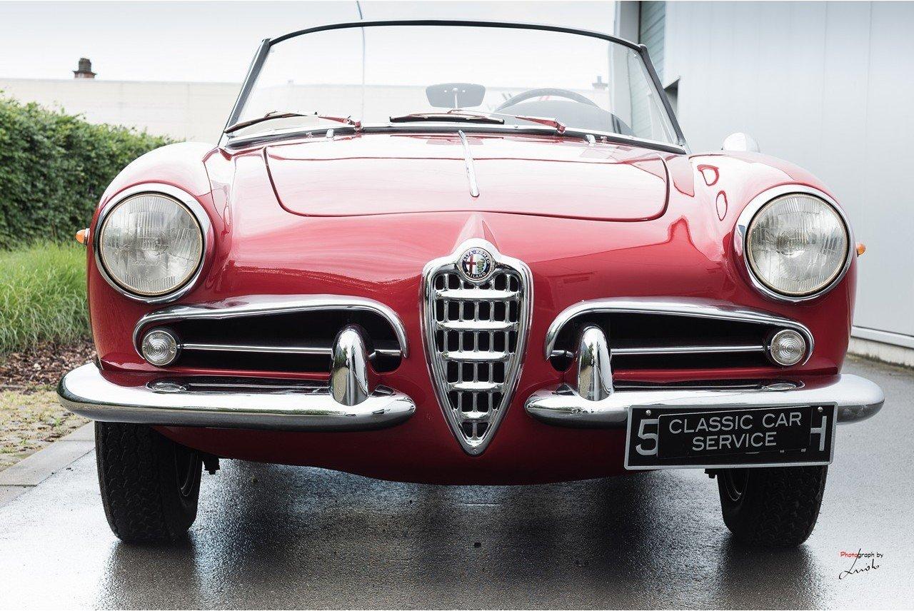 1961 Alfa Romeo Giulietta Spider For Sale (picture 11 of 27)